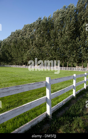 racecourse in China village - Stock Image