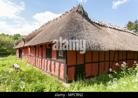Red brick thatched barn at the Folk Museum: An old brick and wood barn painted red and substantially thatched stands in an overgrown lawn at the Folk Museum in Lyngby. - Stock Image