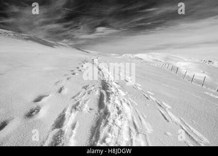 plateau covered with snow in winter - Stock Image