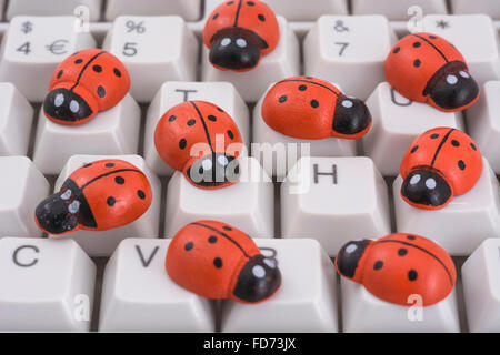 Ladybirds / ladybugs on PC keyboard - as a visual metaphor for the concept of 'computer bug' or viral / - Stock Image