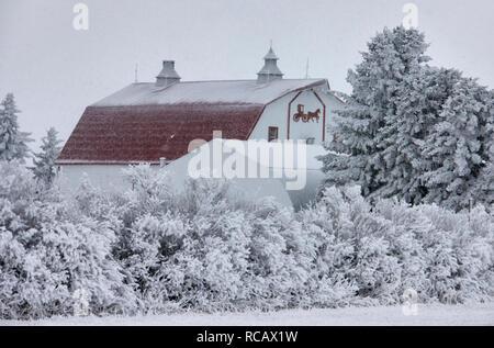 Winter Frost Saskatchewan Canada ice storm danger - Stock Image