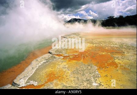 New Zealand north island near rotorua New Zealand Champagne pools thermal lake - Stock Image