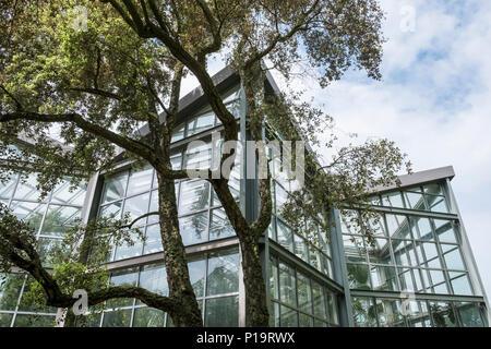 Exterior of a Tropicarium glasshouse building inside Palmengarten botanical gardens, Frankfurt am Main, Hesse, Darmstadt, Germany. - Stock Image