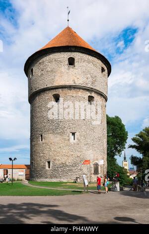 Tallinn Kiek in de Kok, view of the tall medieval cannon tower on Toompea Hill known as Kiek in de Kok, Tallinn, Estonia. - Stock Image