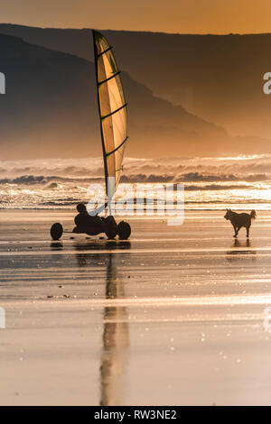 Evening light over Fistral as a dog runs after a sand yacht. - Stock Image