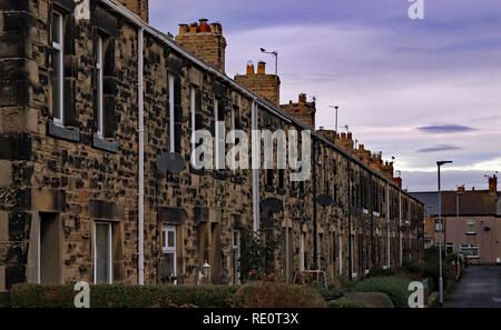 Northumbria terraced housing with small front gardens in Amble,   Amble is a small town on the north east coast of Northumberland in the North East. - Stock Image
