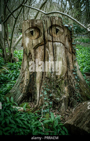 Monster in the Wood - Stock Image