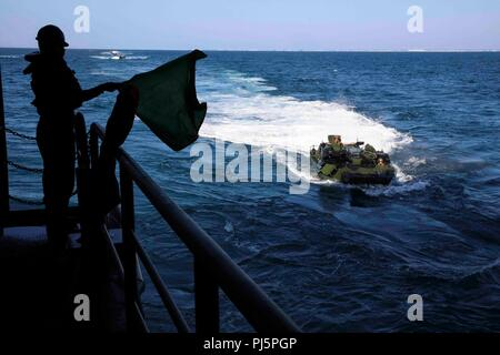 180824-N-HG389-0038 ATLANTIC OCEAN (Aug. 24, 2018) Boatswain's Mate 3rd Class Jorge Perez signals to Marines assigned to the 22nd Marine Expeditionary Unit (MEU) as they drive an amphibious assault vehicle into the well deck of the amphibious transport dock ship USS Arlington (LPD 24) during the Carrier Strike Group FOUR (CSG 4) Amphibious Ready Group, Marine Expeditionary Unit exercise (ARGMEUEX).  Kearsarge Amphibious Ready Group and 22nd MEU are enhancing joint integration, lethality and collective capabilities of the Navy-Marine Corps team through joint planning and execution of challengin - Stock Image