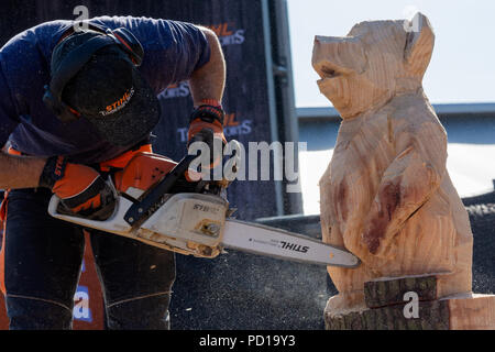 Woodstock, UK, 4th August 2018. Visitors flocked to BBC Countryfile Live, held within the grounds of Blenheim Palace. Animals, wildlife, food, outdoor sports, conservation, farming, rural affairs, entertainment, all were represented. STIHL Arena, speed chainsaw carving demonstration. Credit: Stephen Bell/Alamy Live News. - Stock Image