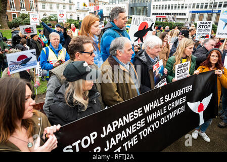 London, UK. 26th January 2019. London protest against the intended resumption of whaling by Japan.The Japanese government recently backed out of an international agreement banning commercial whaling. Campaigners rally at Cavendish Square for the march to the Japanese Embassy. Speakers assembled behind banner. Credit: Stephen Bell/Alamy Live News. - Stock Image