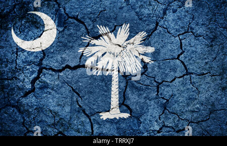Flag of the U.S. state of South Carolina on dry earth ground texture background - Stock Image