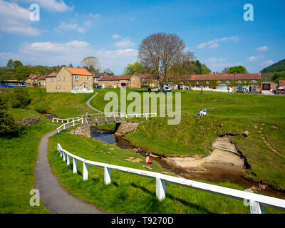 Houses in  Hutton le Hole North Yorkshire where a stream runs through grassy meadows in the centre of the village - Stock Image