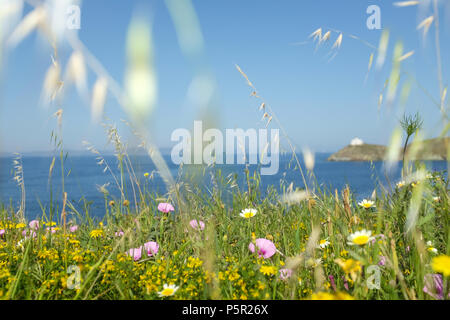 Island of Kea's ( Tzia ) Floral Coastline looking out to sea with a view of the Lighthouse. Aegean Sea's Cyclades archipelago, Greece. - Stock Image