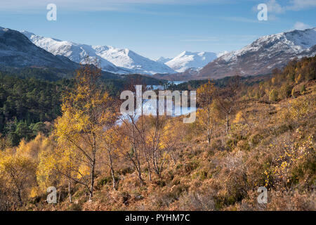 View of Autumn colours and fresh snow on the mountains of Glen Affric, Highland, Scotland, UK - Stock Image