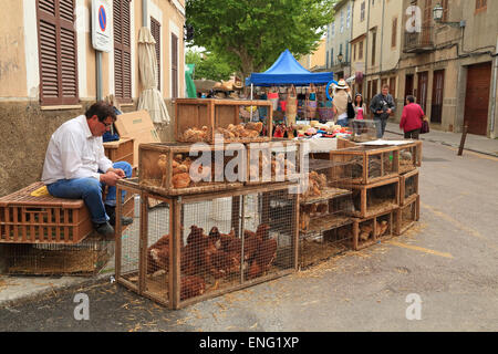 Man selling live chickens at a street market in Artà, Mallorca - Stock Image