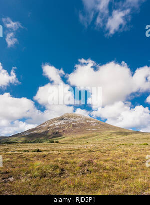 Looking towards Mount Errigal, one of Ireland's most iconic mountains, from bogland outside Dunlewy, County Donegal, Ireland - Stock Image