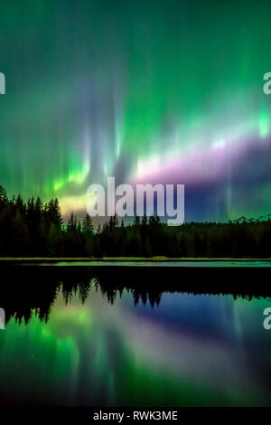 Green and purple northern lights reflected in water, Tongass National Forest, Southeast Alaska; Alaska, United States of America - Stock Image