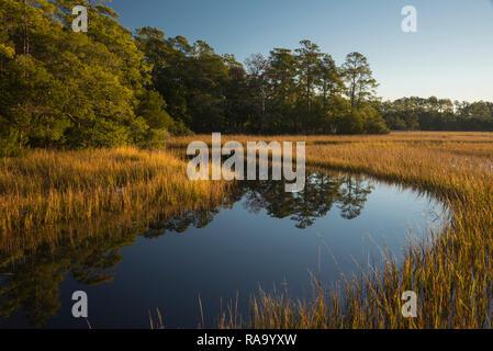 Intracoastal marsh, wetland, Vereen Gardens, Little River, South Carolina, United States - Stock Image