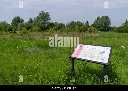 Information board  for visitors to Summer Leys Local Nature Reserve, near Wollaston, Northamptonshire, UK - Stock Image