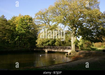 Cassio Bridge, River Colne, Cassiobury Park, Watford, Herts, UK - Stock Image