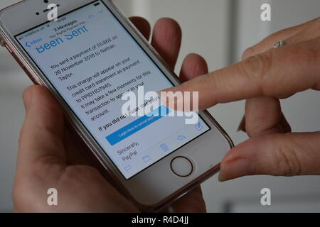 Scam email purporting to be from Paypal, asking recipient to Login Now, shown on a mobile phone with a woman's finger over the touch screen. - Stock Image