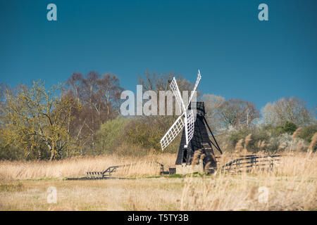 The last surviving wooden windpump in the Fens at Wicken Fen National Nature Reserve, Cambridgeshire, East Anglia, England, UK. - Stock Image