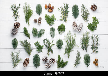 Fir branch and cones on wooden table - Stock Image