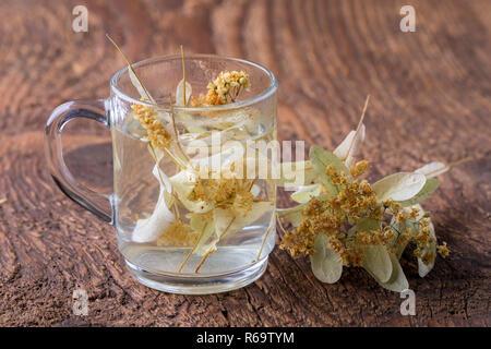 Linden Flower Tea - Stock Image