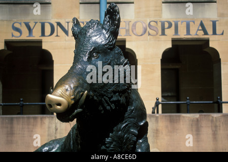 Australia New South Wales Sydney Sydney Hospital Il Porcellino Brass Boar - Stock Image