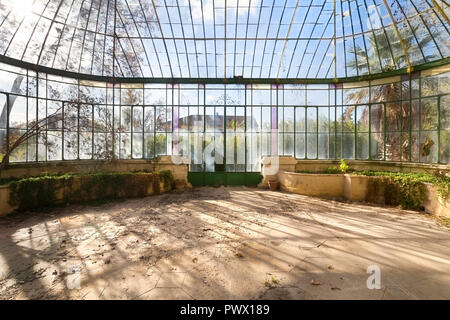 Interior view of a beautiful greenhouse in an abandoned castle in France. - Stock Image