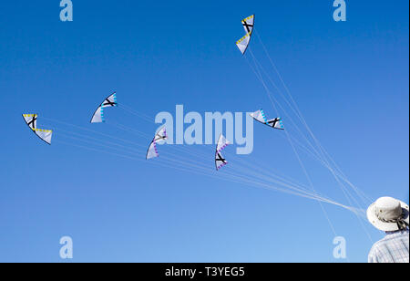 A young man is runnig a kite on tne beach of Pacific ocean - Stock Image