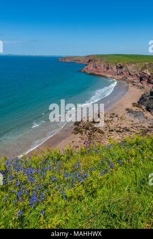 Pembrokeshire Coast Path, Haverfordwest SA62 3BJ - Stock Image