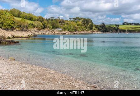 Coastline and Polgwidden Beach of Trebah Garden, Cornwall, England, UK | Strand und Kueste von Trebah Garden, Cornwall, England, UK - Stock Image
