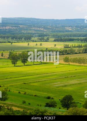 Field Cepic in Istria Croatia - Stock Image