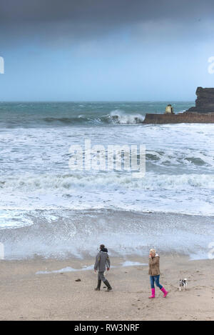Dog walkers on the beach at Portreath in Cornwall. - Stock Image