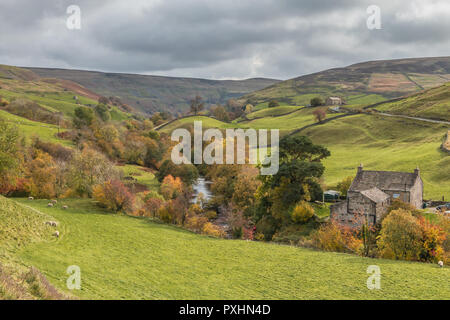Yorkshire Dales National Park autumn landscape, Park House and River Swale, Keld, Upper Swaledale, UK - Stock Image