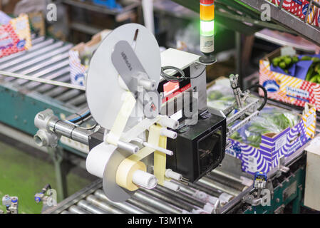 Tenerife, Spain - January 3, 2019: Automated labeling machine during operation in food packaging industry in Tenerife, Canary islands, Spain. - Stock Image