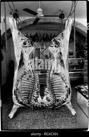 Casole d'Elsa, Tuscany, Italy. 1990. Scanned in 2019 Street and cafe bar life in the small hill top town of Casole d'Elsa in Tuscany Italy. Butchers shop displays it wares, a cow cut in half - Stock Image