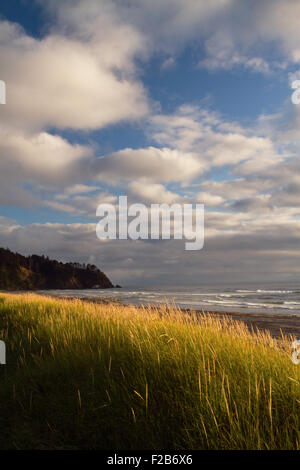 Long Beach of Washington State, Coastal view of the Pacific Ocean. - Stock Image