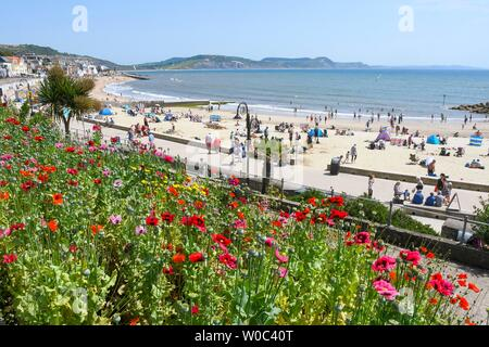 Lyme Regis, Dorset, UK.  27th June 2019. UK Weather.  View from Jane Austen Gardens at the seaside resort of Lyme Regis in Dorset as sunbathers on the beach enjoy a day of clear blue skies and scorching sunshine.   Picture Credit: Graham Hunt/Alamy Live News - Stock Image