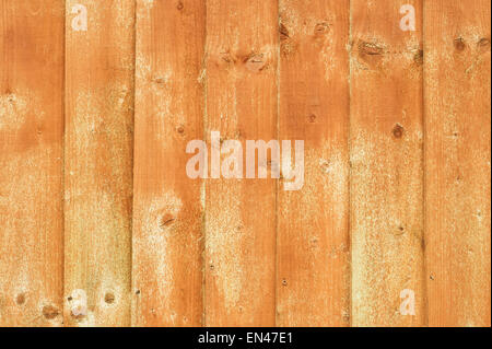 Wooden fence panels recently treated with wood preservative - Stock Image