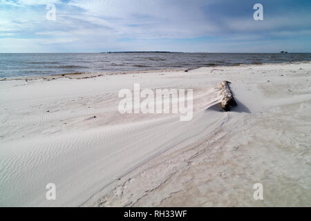 Driftwood washed up on the beach near Fort Morgan, Alabama. - Stock Image