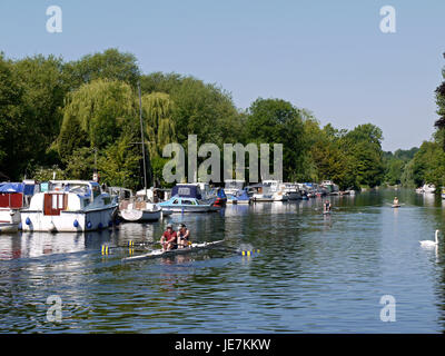 Rowing on The River Yare, part of The Broads National Park, at Thorpe St Andrew, Norwich, England, UK - Stock Image