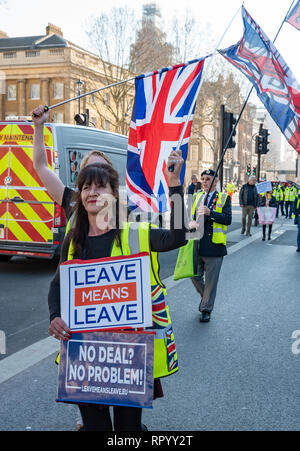 London, UK. February 23rd 2019. Pro Brexit 'Yellow Vests' marched escorted by police from Trafalgar Square down Whitehall and Parliament Street to Parliament Square. Traffic was held longest outside Downing Street and at the Parliament Square junction. Angry drivers sounded their horns. The 'Yellow Vests' then marched back again. They carried placards stating Leave Means Leave, supporting leaving the EU without a deal. Credit: Stephen Bell/Alamy Live News. - Stock Image