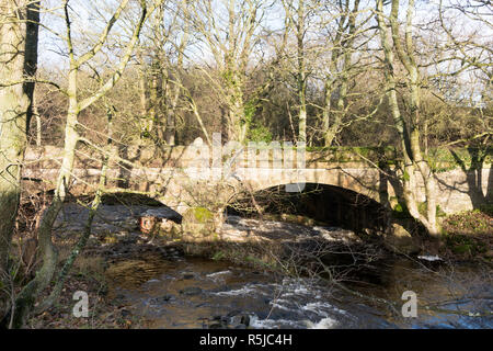 Two arch stone bridge over Bollihope Burn on the abandoned Bishopley Branch railway, from the Weardale Way, near Frosterley, Co. Durham, England, UK - Stock Image