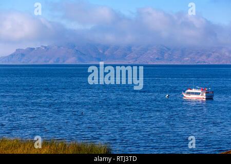 Titicaca lake, near Huatajata, La Paz department, Bolivia - Stock Image