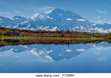 Alaska : Mount McKinley and Reflection Pond in Denali national Park - Stock Image