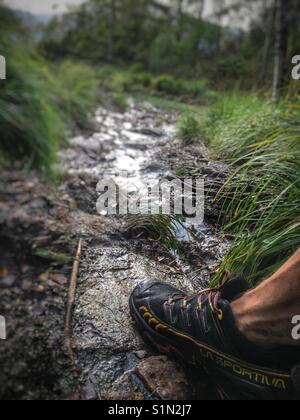 Walking in wet terrain - Stock Image