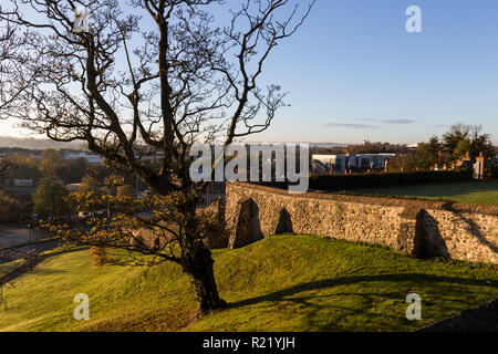 View from top of Castle Gardens, looking at walls on hillside with large tree in foreground.  Lisburn, N.Ireland. - Stock Image