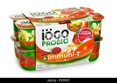 Iogo Yogurt, Probiotic, Lactose Free - Stock Image